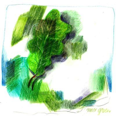 01 Meer groen!